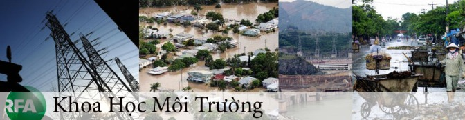 Sự suy giảm tài nguyên biển và suy giảm đa dạng sinh học ở Việt Nam