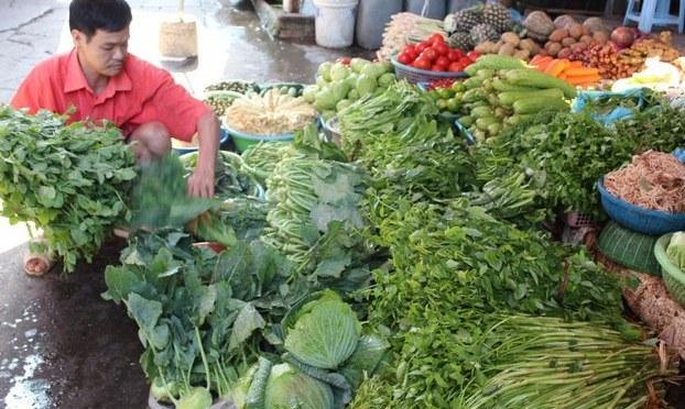 Bế tắc của những người trồng rau sạch