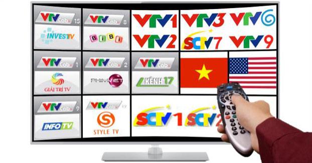 Kênh Truyền hình VTV và Người trẻ Việt hải ngoại
