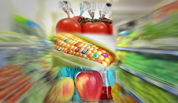 Nên hay không nên sử dụng thực phẩm biến đổi gien